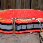 Front view of reflective collar in daytime.