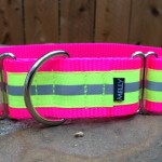 SPORT in Neon Pink & Yellow