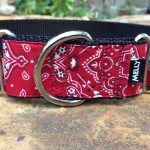 Bandanna martingale by MELLY
