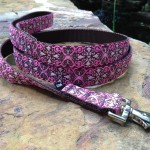 Pink Scroll Leash