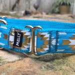 Cherokee in Turquoise