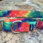 MELLY_The Grateful Dog_Martingale Collar (1)
