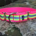 1.0 SPORT Neon Pink & Yellow (Main)