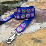 MELLY Collars Paloma 1.0 Leash1